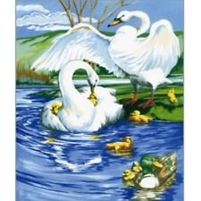 Swans, paint by number