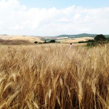 painting workshop retreat in Tuscany, Italy,